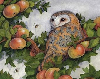 Barn Owl in Tree by Lisa Ferguson....Blank Greeting Card....Owl Lover...Owl Art...Canadian Art