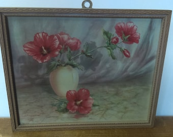 Rose of Sharon Framed Print Vintage DAC 44 Shropshire