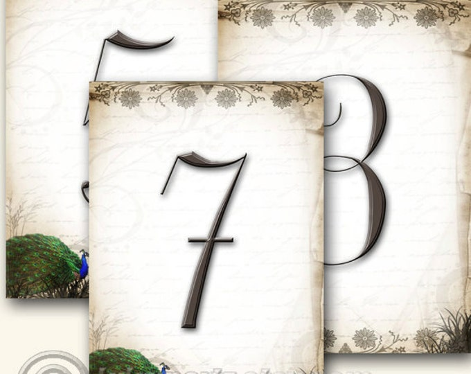 PEACOCK Wedding Table Number, 5x7, Printable, Weddings, Parties, Bridal Shower, Baby Shower, Seating Numbers, wedding decoration