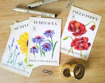 Flower Postcard Set - Art Postcards, Garden Postcards, Garden Stationery, Flower Stationery, Garden Art, Seed Packet Art, Sunflower Art