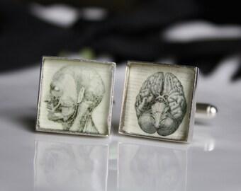 Vintage Anatomy Cufflinks