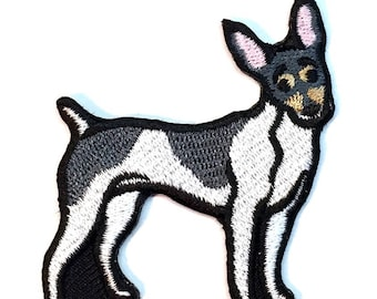 Toy Fox Terrier Iron on Patch No Name