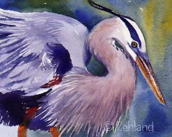 Great Blue Heron Print 8x10 Watercolor Bird Wall Art by Janet Zeh