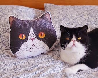 Panko the cat small face illustration cushion