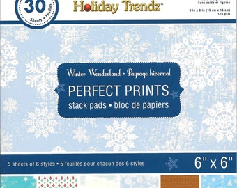 6 x 6  Paper Pad  ~~ Winter Wonderland  ~~  Holiday Trendz Brand  --  NEW  (#1842)