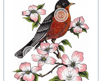 Whimsy Stamps --  Robin on a Branch -- NEW  -- (#2877)