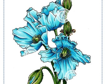 Whimsy Stamps -- Himalayan Poppy -- NEW -- (#2685)