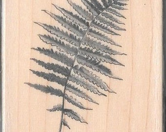 Fern Leaf Stamp --   NEW  --  Inkadinkado Brand --   (#3065)