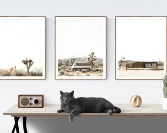 Set of 3  Desert Joshua Tree Modern Prints , Mid century modern wall art, Minimalist art,