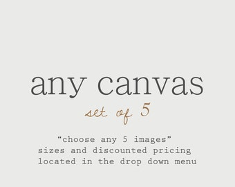 Discounted Set Customize Any Set of 5 Canvas