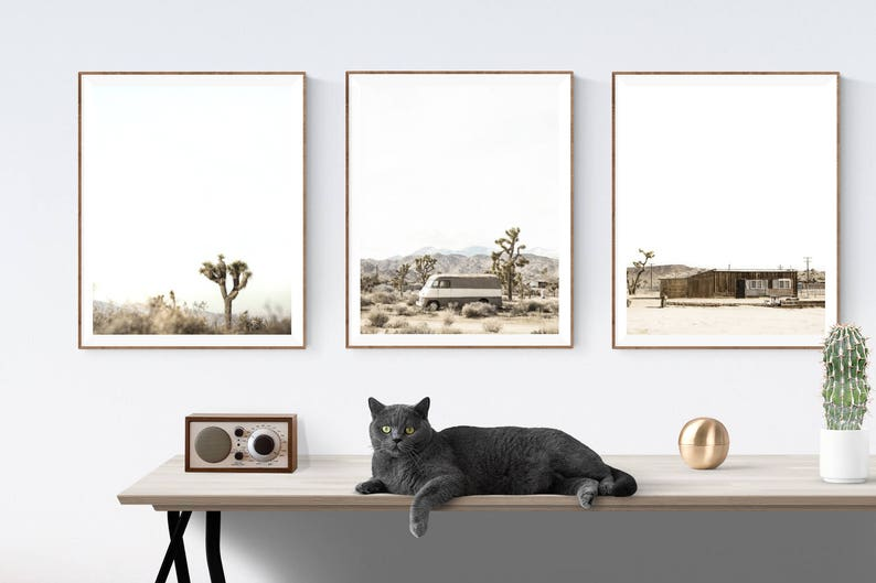 Set of 3  Desert Joshua Tree Modern Prints  Mid century image 0