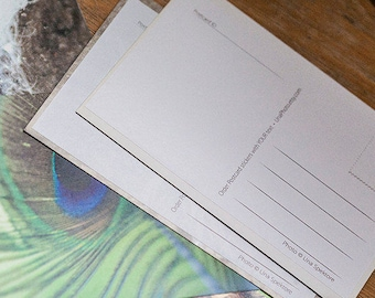 Printable Postcard Stickers. From photo to postcard with sticker for Postcrossers