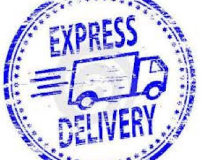 EXPRESS DELIVERY- USA only