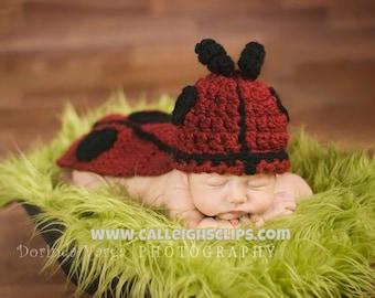 Instant Download Crochet Pattern No.5  Ladybug - Cuddle Critter Cape Set  - Newborn Photography Prop