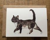 Little Crumb Cat // Greeting Card