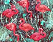 Flamingos // Signed A4 print