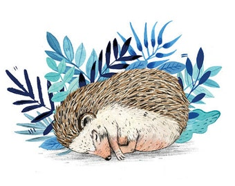 Hedgehog // Signed A4 print