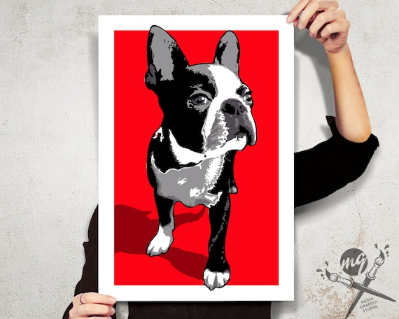 boston terrier taking a bath  dog art print artwork 8.5x11