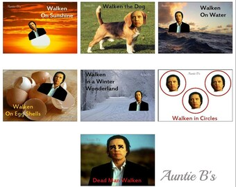 The Walken Series ~ Magnets