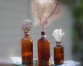 Beach Decor Vintage Set of 3 Amber Bottles with Sea Life - Sea Fan, Coral and Sea Urchin