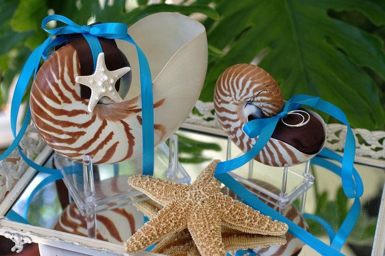 Beach Wedding Matching Nautilus Shell Eco Flower Girl Shell image 0