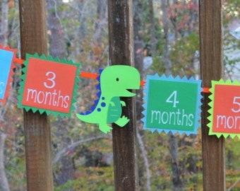 Dinosaur First Year Photo Banner Boy 1st Birthday T Rex 12 month Milestones Picture Banner Orange Blue & Green Dinomite Party Decoration
