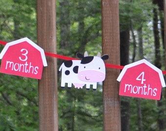 Farm 1st Year Photo Banner 1st Birthday Barnyard Farm Animal 12 month Photo Banner Barnyard Bash CoW PiG CHiCK BaRN HORSE READY TO SHiP