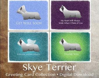 Skye Terrier Dog Greeting Card Collection - Digital Download Printable