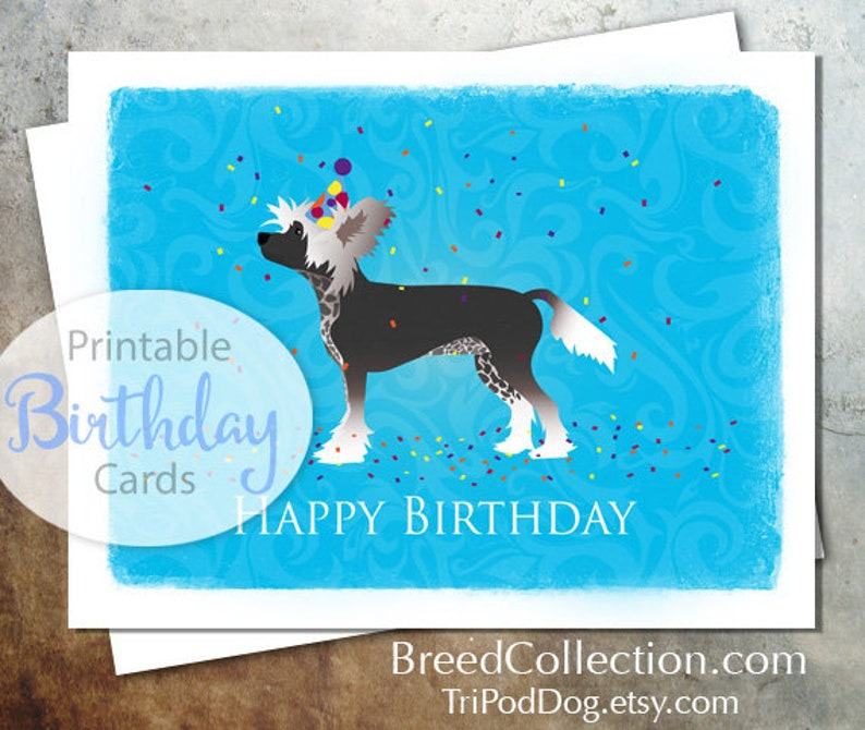 Chinese Crested Dog Birthday Card From The Breed Collection