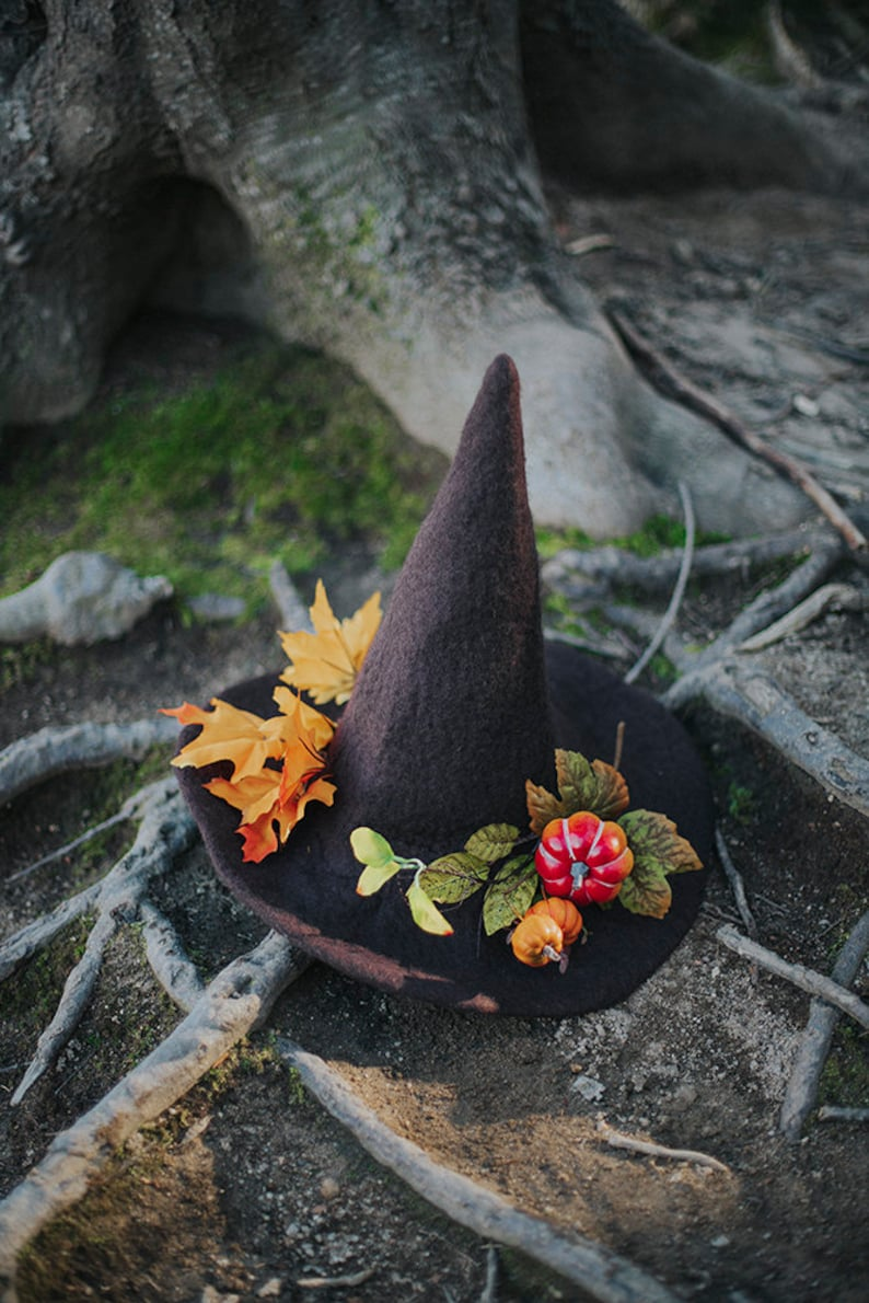 Witch hat with pumpkins and autumn leaves forest wizard hat image 0