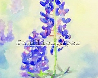Bluebonnets - Print of Original Watercolor Painting