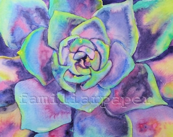 Succulent (Echeveria): 8x10 Print of Original Watercolor Painting