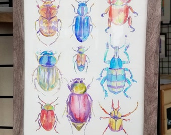 Beetles: Print of my Original Insect Watercolor Painting