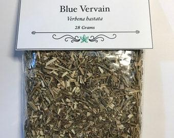 Blue Vervain - Verbena hastata