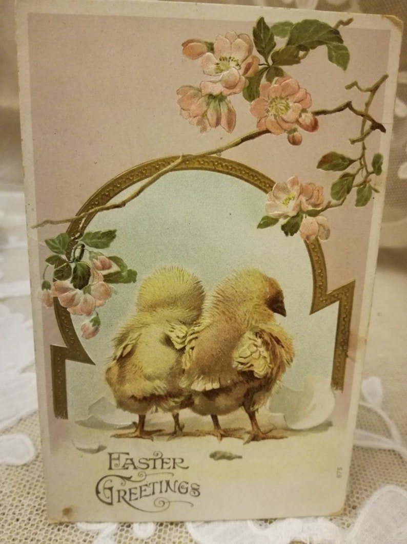 Antique Easter embossed postcard chicks and pink bloom 1907