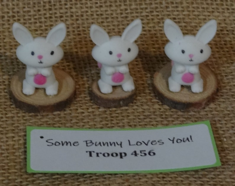 Set of Ten 10 Some Bunny Loves You Rabbit Easter Scout SWAP image 0