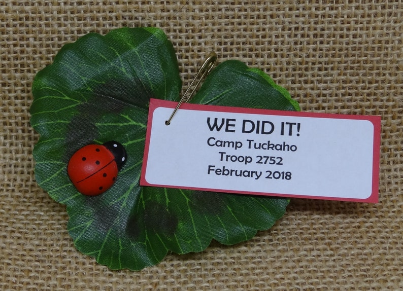 Set of Ten 10 Lady Bug on a Leaf Scout SWAP or Craft Kits image 0