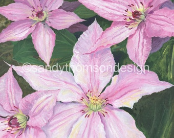 In The Pink! Original acrylic painting on canvas, 12 x 12. Pink Clematis Flowers.