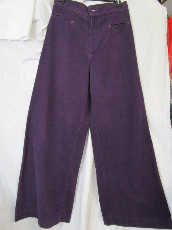 Levi Strauss Vintage Brushed Denim Purple Gauchos,