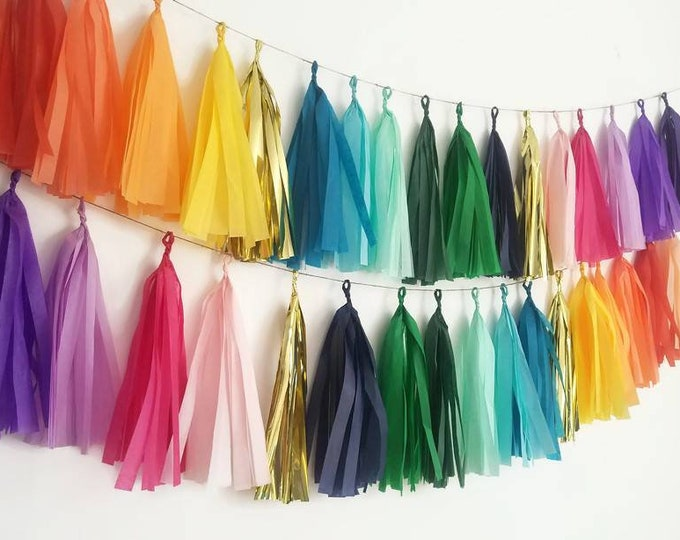 Tissue paper tassel Garland, tassel Garland, rainbow tassel Garland,rainbow Garland, rainbow banner, custom Garland,rainbow,custom tassel