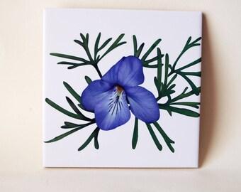 Bird's-foot violet, decorative ceramic tile, trivet, coaster | wall art, Christmas housewarming gift floral tile, Viola flower 1694