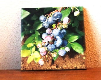 Blueberries! decorative ceramic tile, trivet, coaster, kitchen decor, gift for her | wall art, Christmas gift, foodie gift