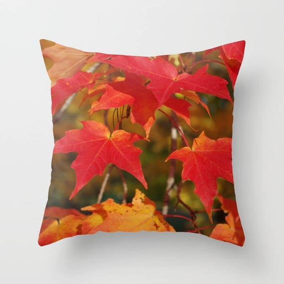 Poinsettia Throw Blanket Floral Fleece Blanket Nature Inspired Simple Red And White Christmas Throw Blanket