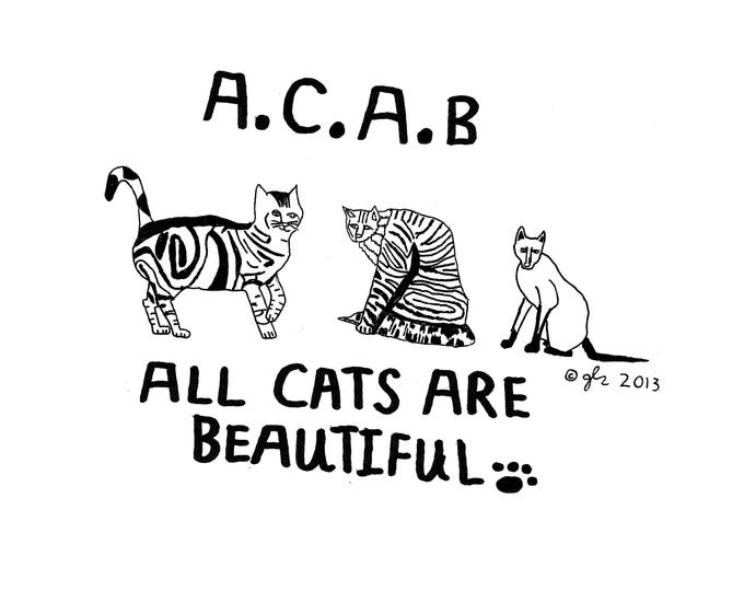 Art Punk Shirts Punk Shirt Print DIY Animal Rights ACAB A.C.A.B Cat All Cats are Beautiful Crust Anarcho Punk Humor Cute Shirt