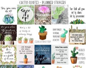 Cactus quotes | Etsy