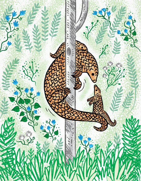 Pangolin Parenting - nature / wildlife - animal art print by Oliver Lake - iOTA iLLUSTRATiON