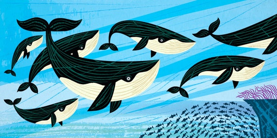 Whale Swim - whales - nature / wildlife - animal art - nursery decor print by Oliver Lake - iOTA iLLUSTRATiON
