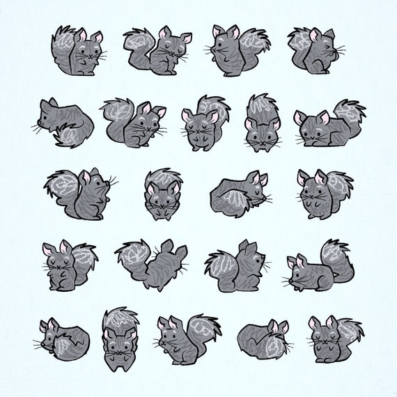 All Chinchilla No Filla - Animal Art Poster Print by Oliver Lake - iOTA iLLUSTRATiON