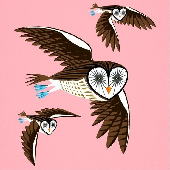 iOTA iLLUSTRATION - Owls On The Prowl - Animal Art Limited Edition Print