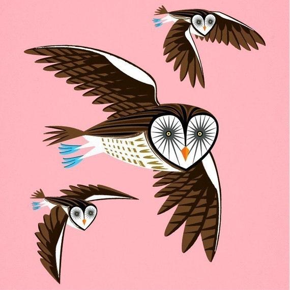 iOTA iLLUSTRATION - Owls On The Prowl - Animal Art Limited Edition Print